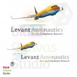 Levant Aeronautics Logo and Identity